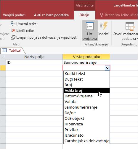 Snimka zaslona s prikazom popisa vrsta podataka u tablici programa Access Odabrani su veliki brojevi.