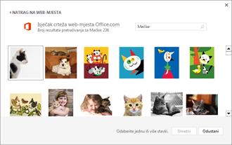 Primjer slika mačaka na web-mjestu Isječci crteža
