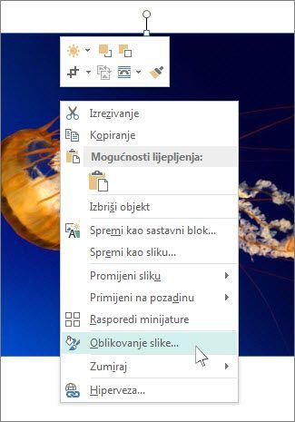 Snimka zaslona s mogućnostima za oblikovanje slike u programu Publisher.