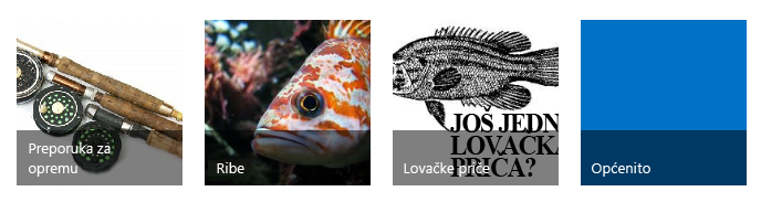 Četiri pločice kategorija, svaka sa slikom i naslovom ribolova