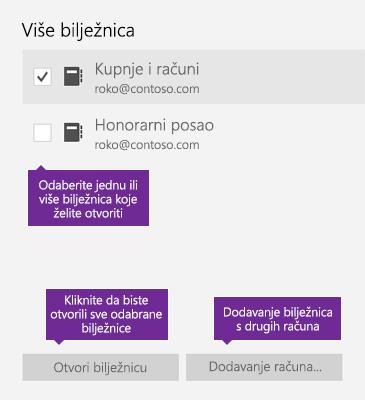 Snimka zaslona s prikazom prozora Više bilježnica u programu OneNote