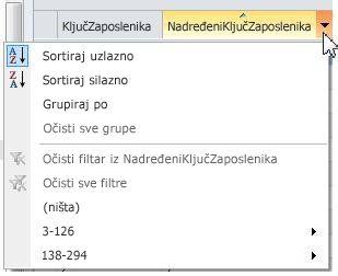 mogućnosti sortiranja, grupiranja i filtriranja na vanjskim popisima