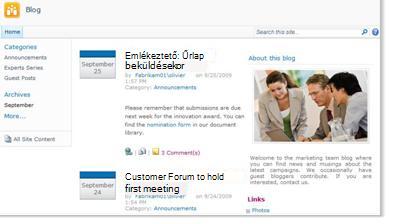 Blogwebhely