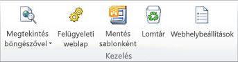 Ábra a SharePoint Designer 2010 alkalmazásról