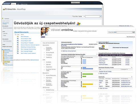 A SharePoint Designer 2010 alkalmazással létrehozott webhely