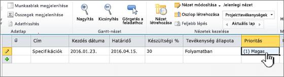 Írja be a címet, a dátumokat és a projekttevékenység állapotát