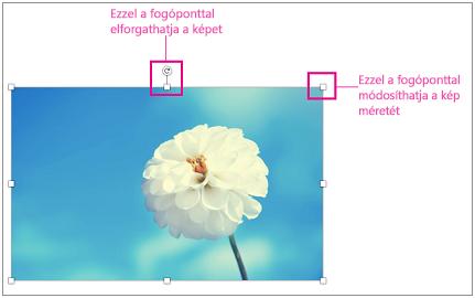 Kiemelt méretezőpontok egy képen