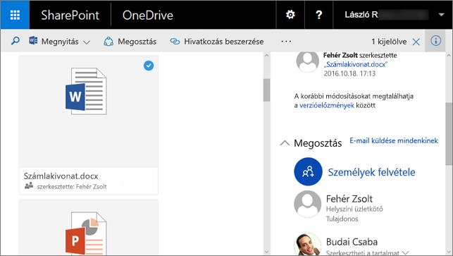 Képernyőkép a Részletek panelről az 1. funkciócsomaggal bővített SharePoint Server 2016 részét képező vállalati verziós OneDrive-ban
