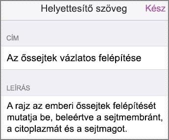 A Helyettesítő szöveg párbeszédpanel iPhone készüléken