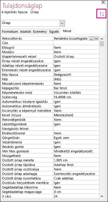 Képernyőkép egy nem rendezett Access-tulajdonságlapról