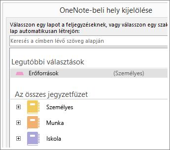 Képernyőkép a OneNote-ablakról, ahol megadhatja, melyik lapra kerüljenek a Skype-jegyzetek.