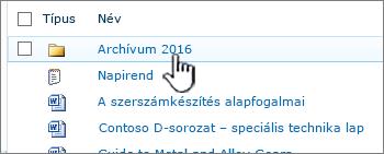 SharePoint 2010-dokumentumtár, egy mappa kiemelve