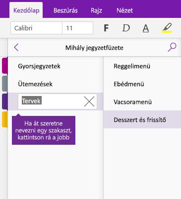 Képernyőkép egy OneNote-szakasz átnevezéséről