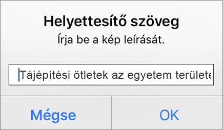 Az iOS Outlookban a képek helyettesítő szövegének hozzáadásakor megjelenő menü