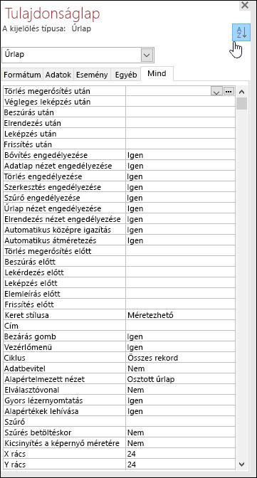 Képernyőkép egy betűrendbe szedett Access-tulajdonságlapról