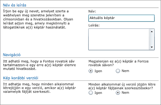 A név, a diagram, a Fontos rovatok és a verziószámozás megadására szolgáló párbeszédpanel.