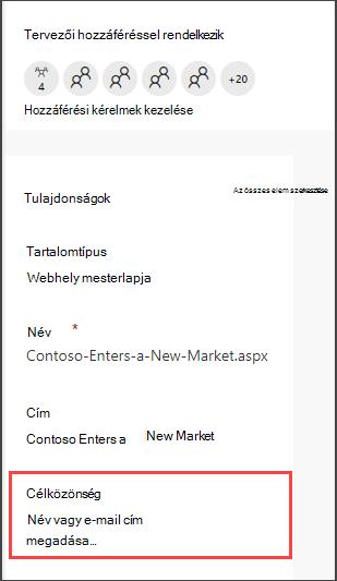 Az oldalak részlet ablaktáblája a célközönség megadására szolgáló beállítással