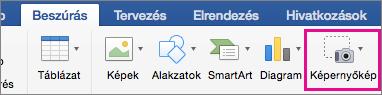Mac Office 2016 Képernyőkép funkció