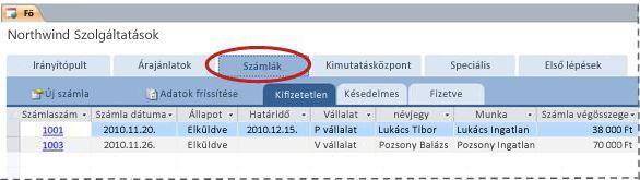 A Szolgáltatások adatbázissablon Számlák lapja