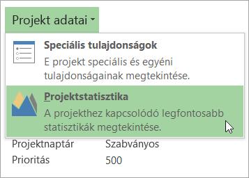 A Projekt adatai lehetőség