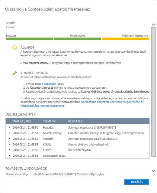 Képernyőkép az üzenetkövetés részleteinek lapjáról, az üzenetkövetési részleteket ábrázoló példával