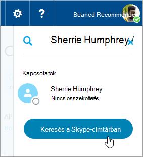 A Keresés mezőbe a Skype munkaablakban látható