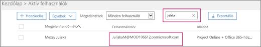 Képernyőkép az Aktív felhasználók lap egy szakaszáról, amelyben egy keresőszó van beírva a Minden felhasználó értékre állított Szűrők beállítás melletti keresőmezőbe. Alatta a teljes megjelenítendő név és felhasználónév látható.