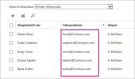 Felhasználónév oszlop az Office 365 felügyeleti központban