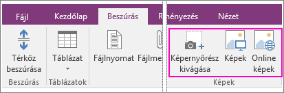 Screenshot of the Insert Pictures options in OneNote 2016.