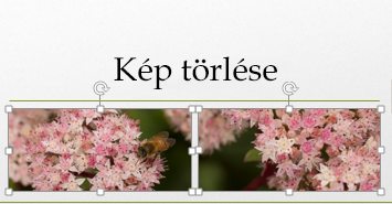 A CTRL billentyűt lenyomva tartva egynél több képet is kijelölhet.