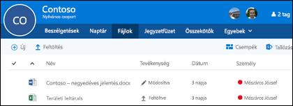 Az Office 365-csoportban a Fájlok elemre kattintva megtekintheti a csoportban tárolt fájlokat és mappákat