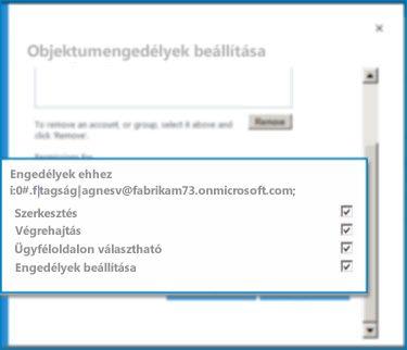 Objektumengedélyek beállítása párbeszédpanel a SharePoint Online szolgáltatásban. Ezzel a párbeszédpanellel állíthatja be a megadott külső tartalomtípus engedélyeit.