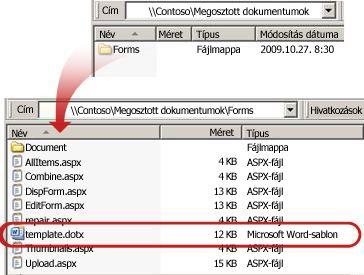 A dokumentumtár Forms mappájának tartalma