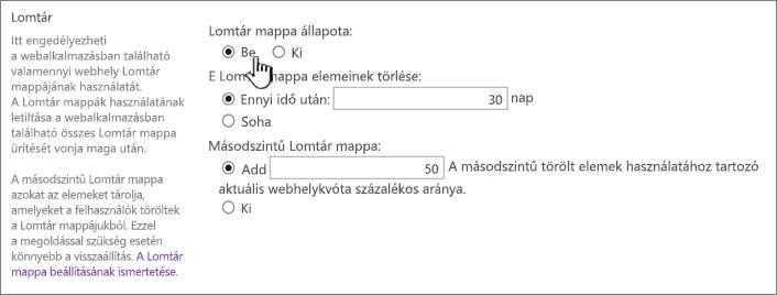 a Lomtár beállítások csoportban a webes alkalmazás általános beállítások megadása lap