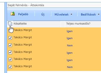 A Webhelykezelő képernyőn, a felmérés választása után, kattintson Az összes kijelölése ikonra.