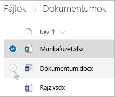 Egy fájl kijelölését ábrázoló képernyőkép a OneDrive-ból