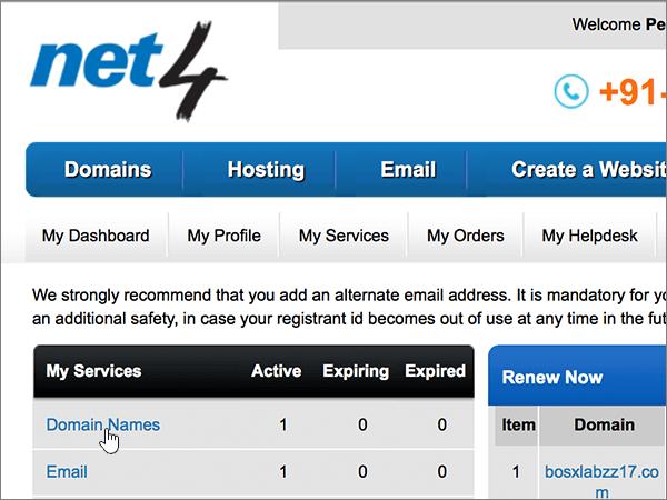 Válassza a Domain Names (Tartománynevek) lehetőséget