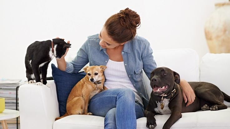 egy nő fényképe egy kutyákkal és macskákkal együtt ülő nőről