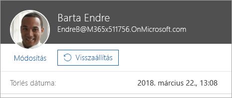 Képernyőkép a felhasználók visszaállítására szolgáló parancsról az Office 365 felügyeleti lapján.