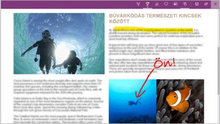 Képernyőkép egy webes feljegyzésről egy Microsoft Edge-lapon