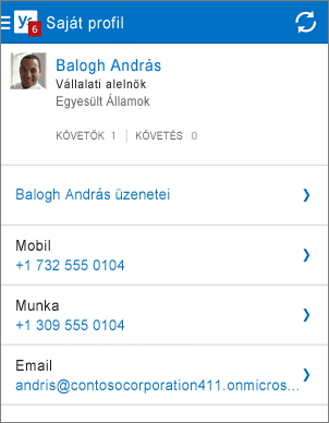 A Yammer alkalmazás Profil lapja
