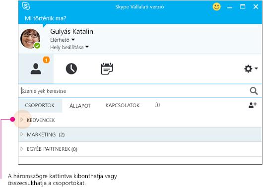 A Skype Vállalati verzió főablaka – kattintson a háromszögekre a csoportok kibontásához vagy összecsukásához