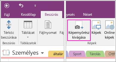 Képernyőkép: a Képernyőrész-kivágás beszúrása gomb a OneNote2016-ban.