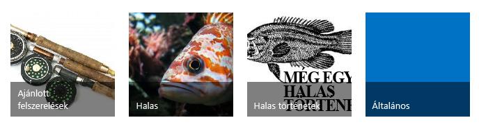 Négy kategóriacsempe horgászati témájú képpel és címmel