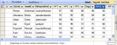 A Jegybevitel adatlap nézet egyszerűvé teszi a jegyek frissítését