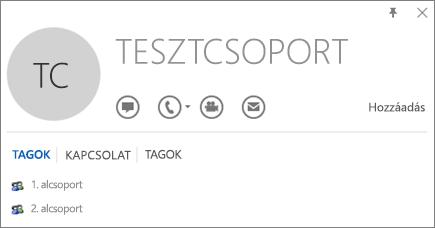 A Tesztcsoport nevű csoport Outlook-névjegykártyájának Tagok lapjáról készült képernyőkép. Az 1. alcsoport és a 2. alcsoport tagként jelenik meg.