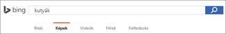 Keresési kifejezés a Bing Képkereső keresőmezőjében