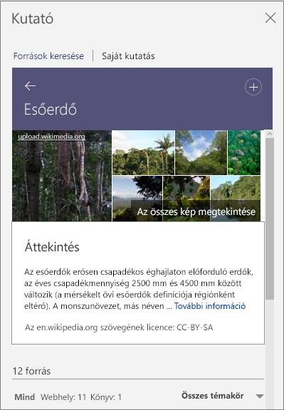 A Kutató ablaktábla, rajta az Esőerdő szóra való keresés találataival