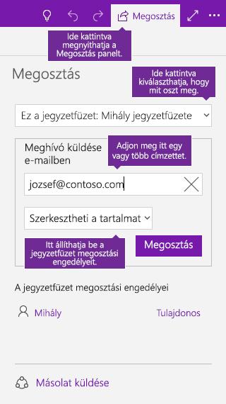 Képernyőkép a OneNote-ból, egy teljes jegyzetfüzet megosztását ábrázolja