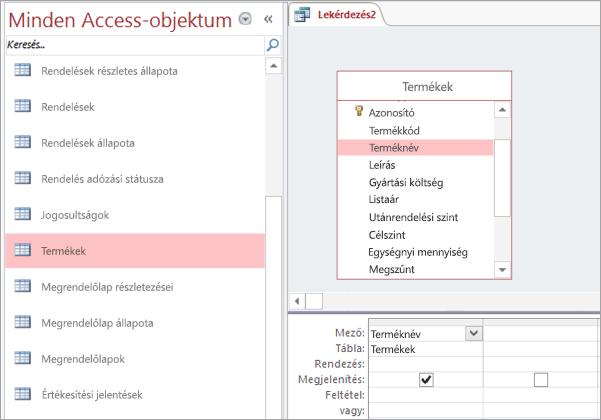 Képernyőkép a Minden Access-objektum nézetről